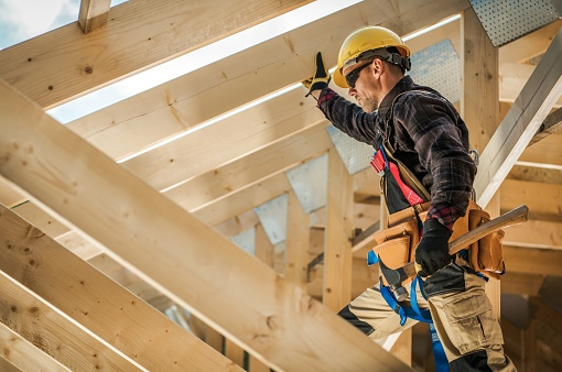 L'importance du bois dans les travaux de construction